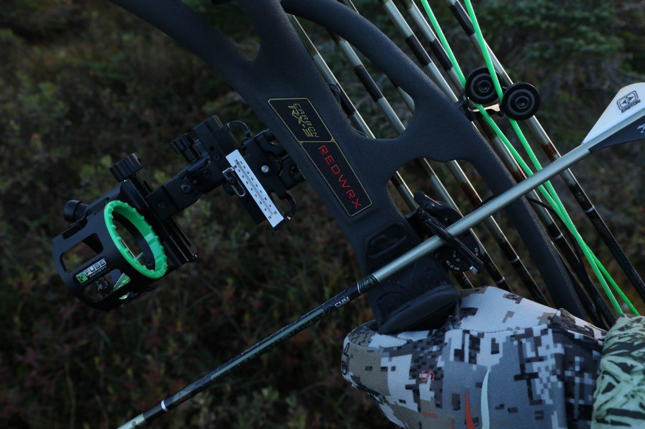 hoyt compound bow