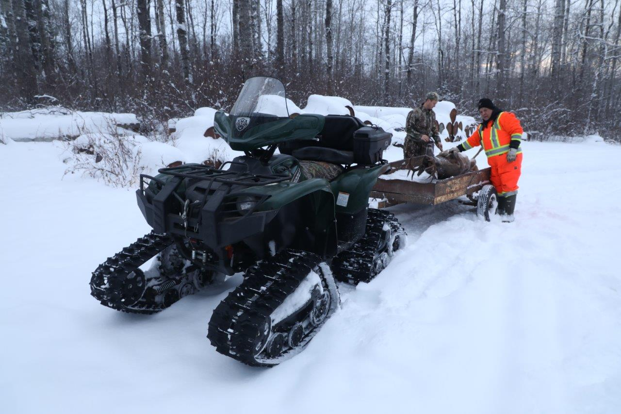 Snow ATV with a trailer bed with a moose