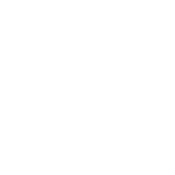 Hoyt white logo